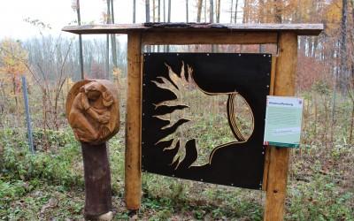 """Waldfenster"""" Aufforstung"""" bei Effolderbach"""