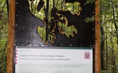 Anfang und Ende des Waldfensterpfades