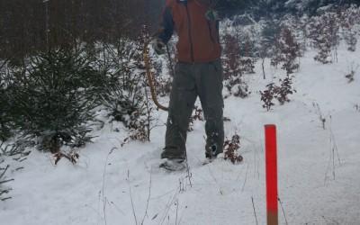 Erste Ernte auf unserer Aufforstung bei Lißberg 2010