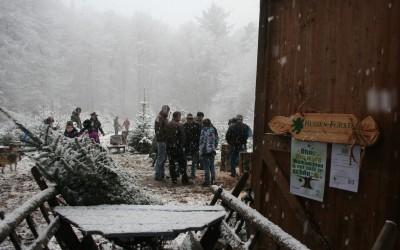 Weihnachtsbaumevent in unserem Pflanzgarten