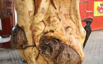 Waschbären und Fledermäuse am Klangbaum