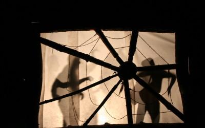 Schattenspiele hinter dem Spinnennetz