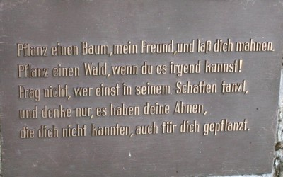 """Schild für unsern """"Kyrillstein"""" bei Gedern"""